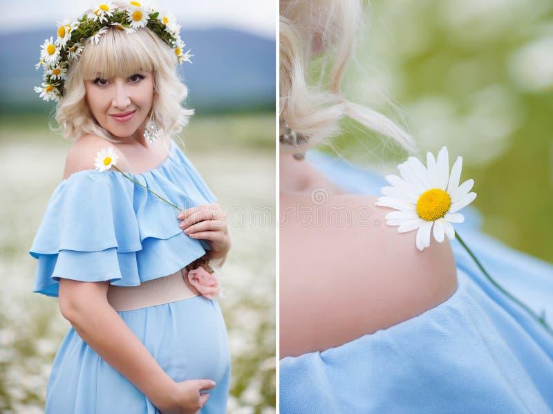 Collage-gravid kvinna i ett fält av att blomma vita tusenskönor arkivfoto