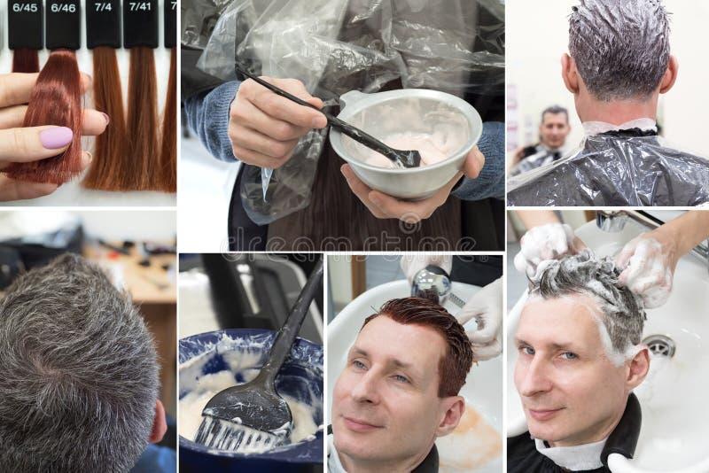 Collage gris del pelo que colorea Collage que muestra fases de coloración del cabello en el salón de belleza fotos de archivo libres de regalías