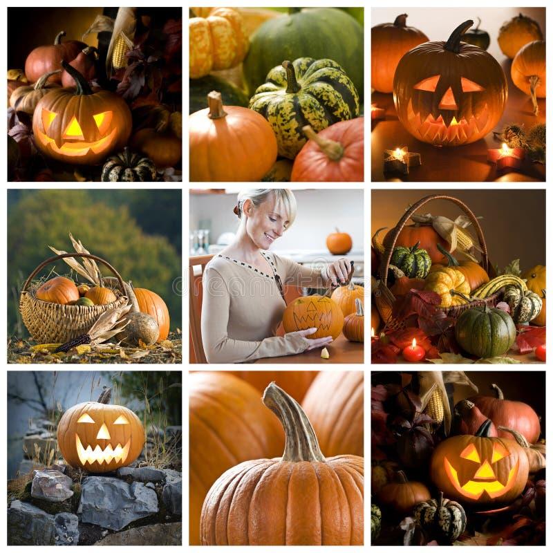 collage halloween royaltyfri foto
