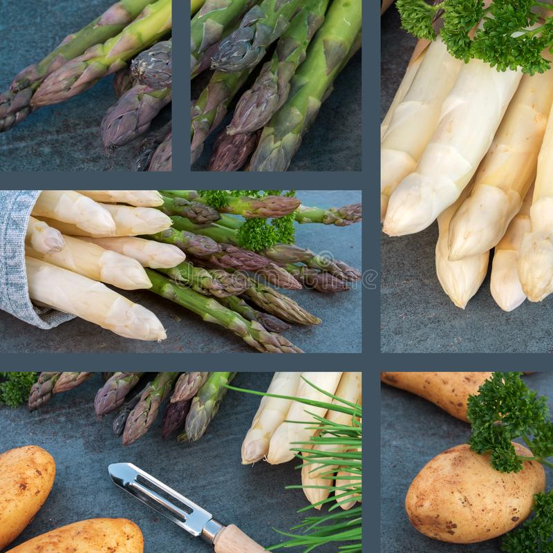 Collage with asparagus royalty free stock photos