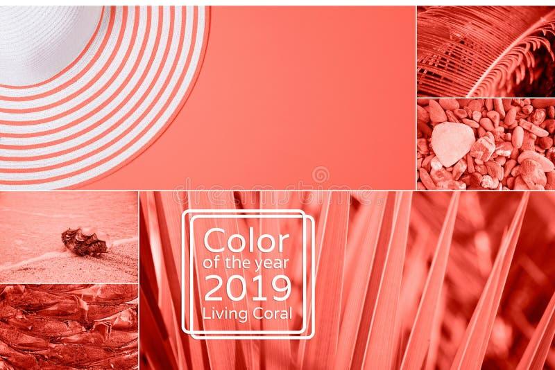 Collage in het Leven Koraalkleur Kleur van het jaar 2019 stock fotografie