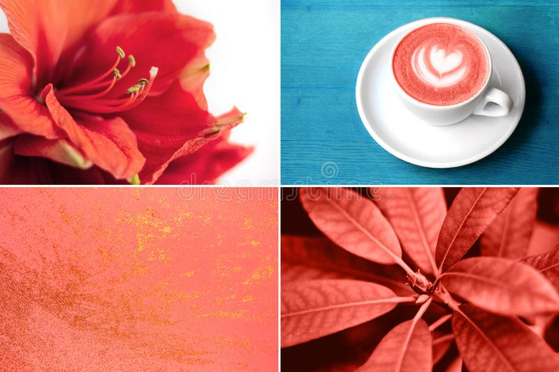 Collage inspired by color trend of the year 2019. Collage inspired by coral color. Color trend of the year 2019 stock photo