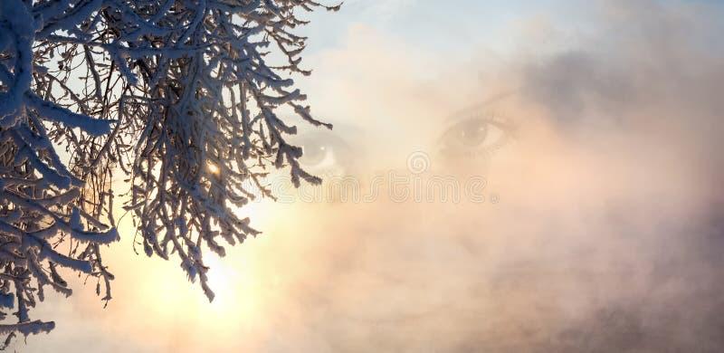 collage inverno, inverno-maré, inverno-tempo imagem de stock royalty free