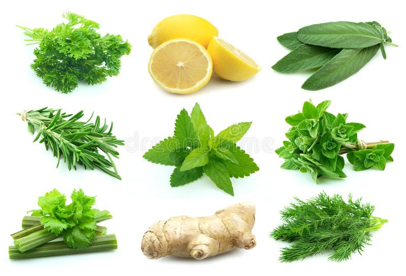 Collage Of Juice Spice Stock Photos