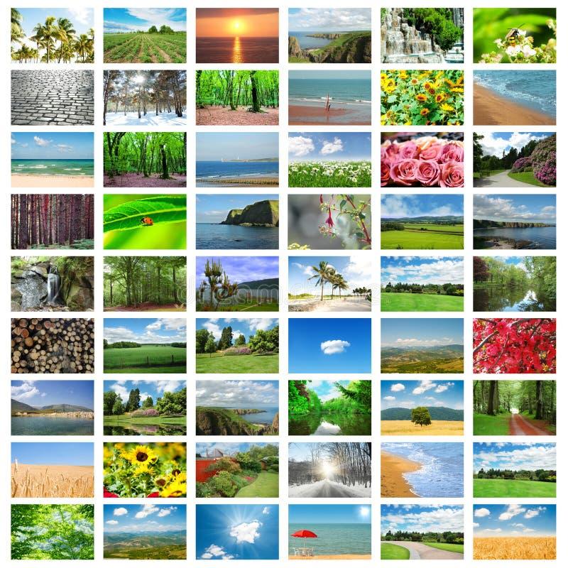 Collage många foto