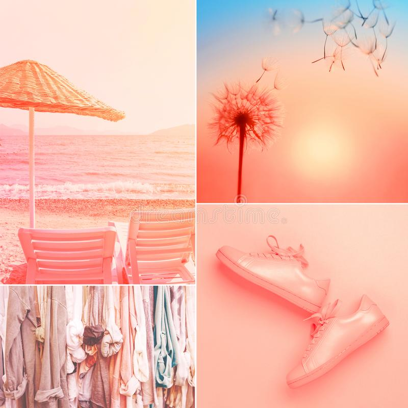 Collage made of four photos in living coral color. royalty free stock images
