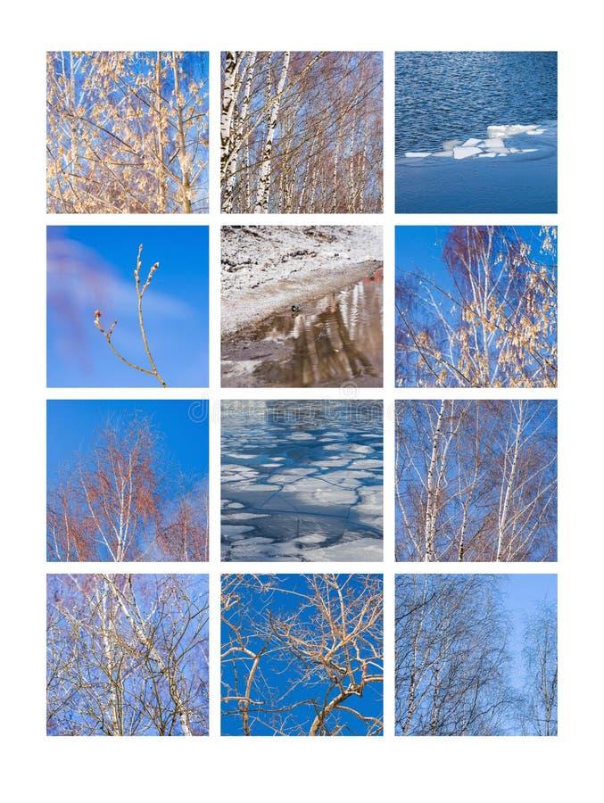 Collage marzo fotografia stock