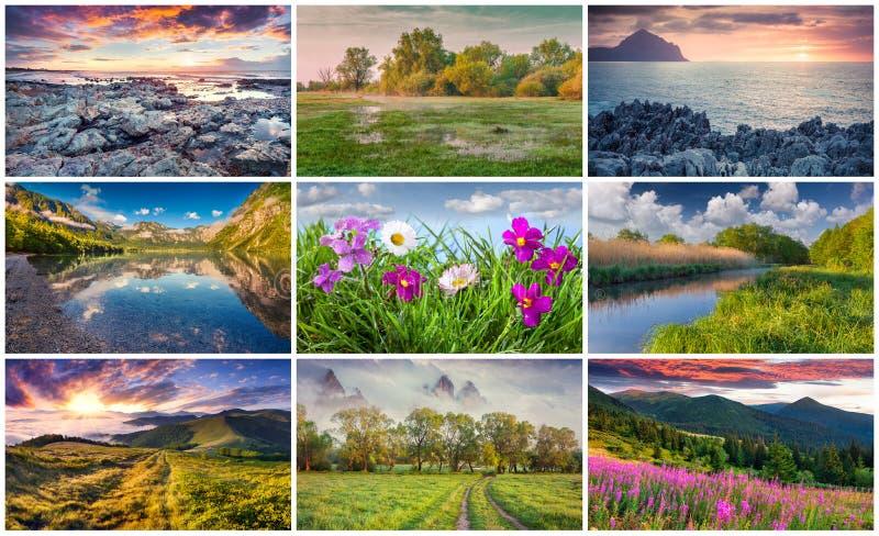 Collage med 9 färgrika sommarlandskap arkivbilder