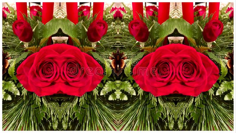 Alien Rose Creatures. Collage of mirror image of Christmas Centerpiece made to look like living creatures royalty free stock images