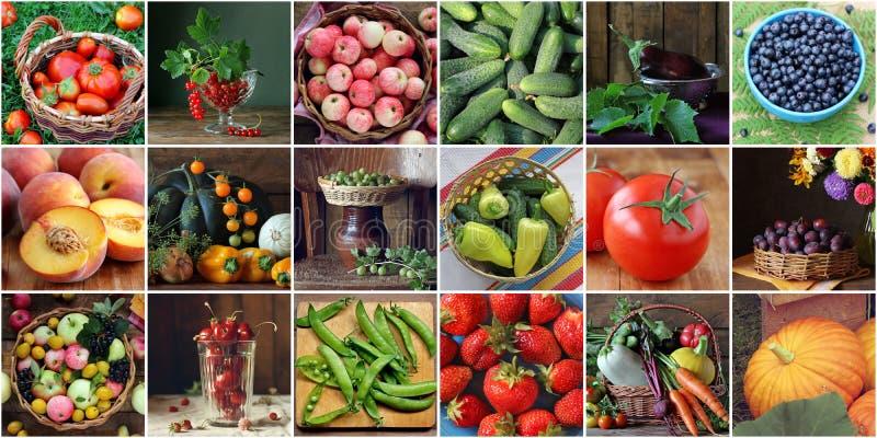 Collage mit Gemüse, Beeren und Früchten Gurken und tomat lizenzfreies stockbild