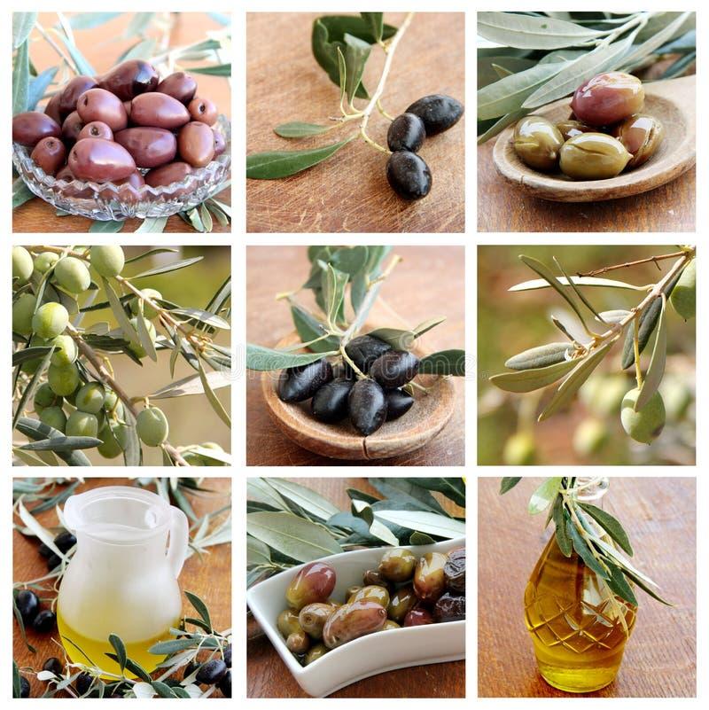 Collage mit Oliven und Olivenöl stockfotos