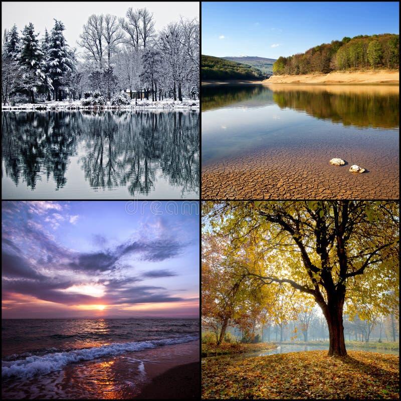 Collage mit vier Jahreszeiten lizenzfreie stockfotografie