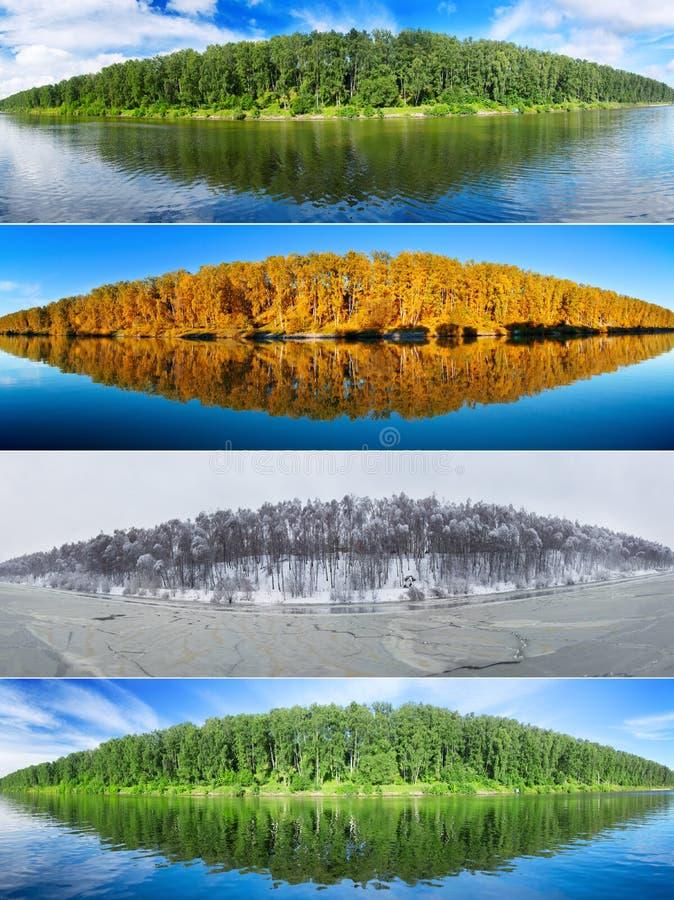 Collage mit vier Jahreszeiten: Sommer, Fall, Winter und Frühling lizenzfreies stockfoto