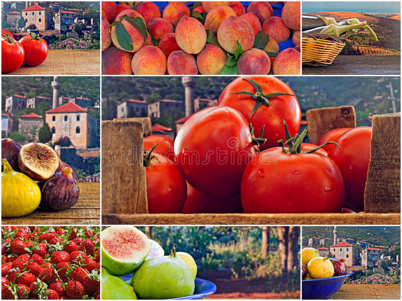Collage of mixed fresh fruit and vegetables stock images