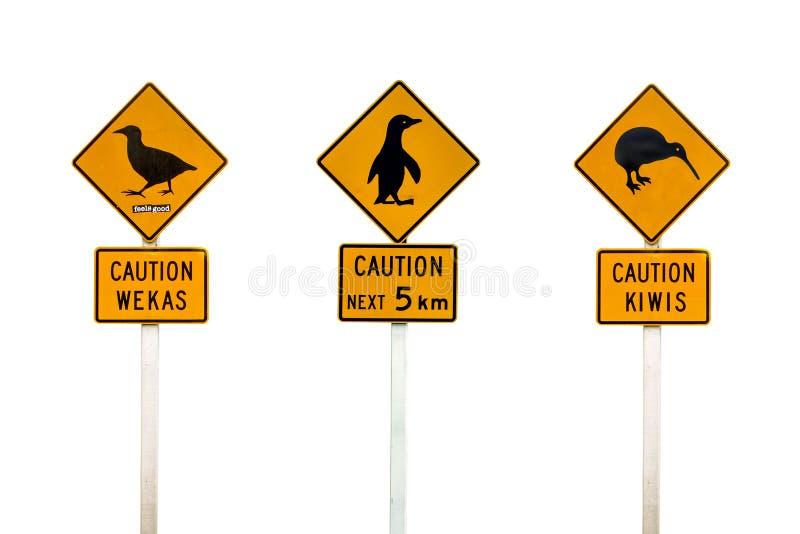 Collage of New Zealand penguin, weka and kiwis road sign royalty free stock image