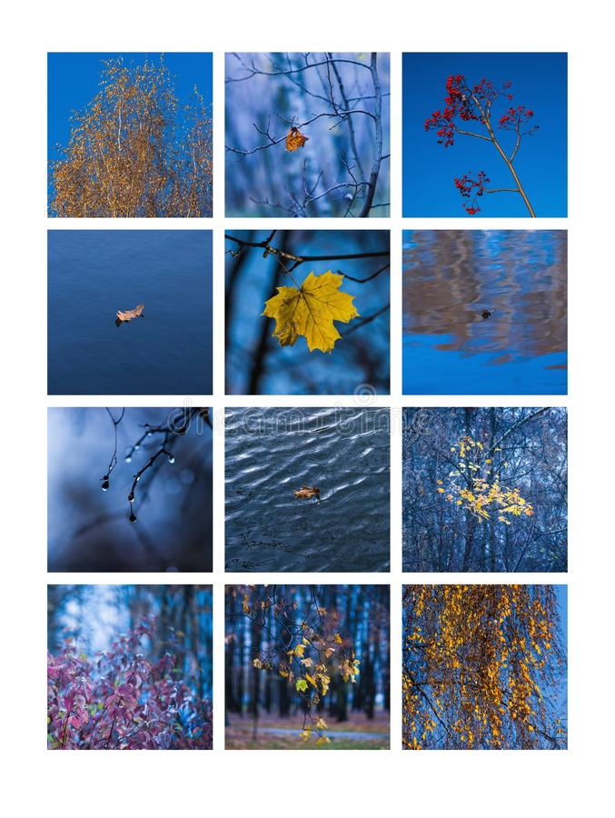 Free Collage November Stock Photo - 43478520