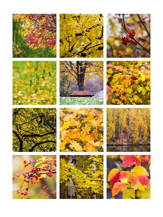 Collage octubre fotografía de archivo libre de regalías