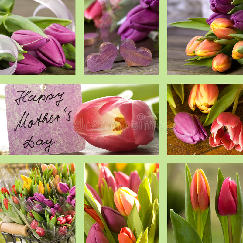Free Collage Of Tulips With Mothers Day Card Royalty Free Stock Image - 22738956