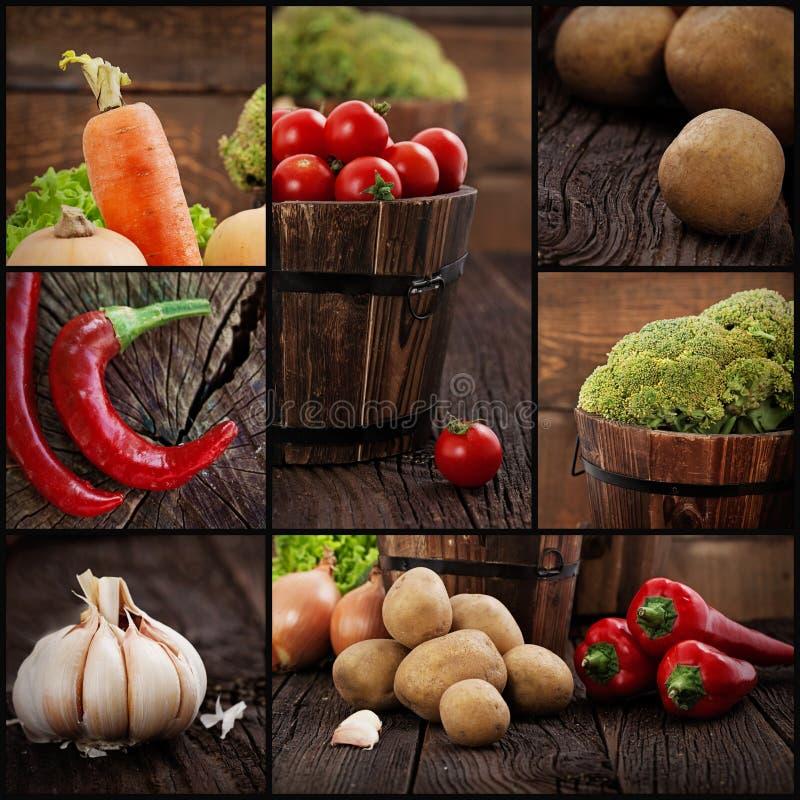 Collage orgánico de las verduras imagen de archivo libre de regalías