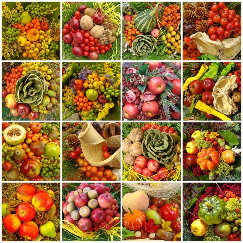 Collage otoñal de la cosecha foto de archivo libre de regalías