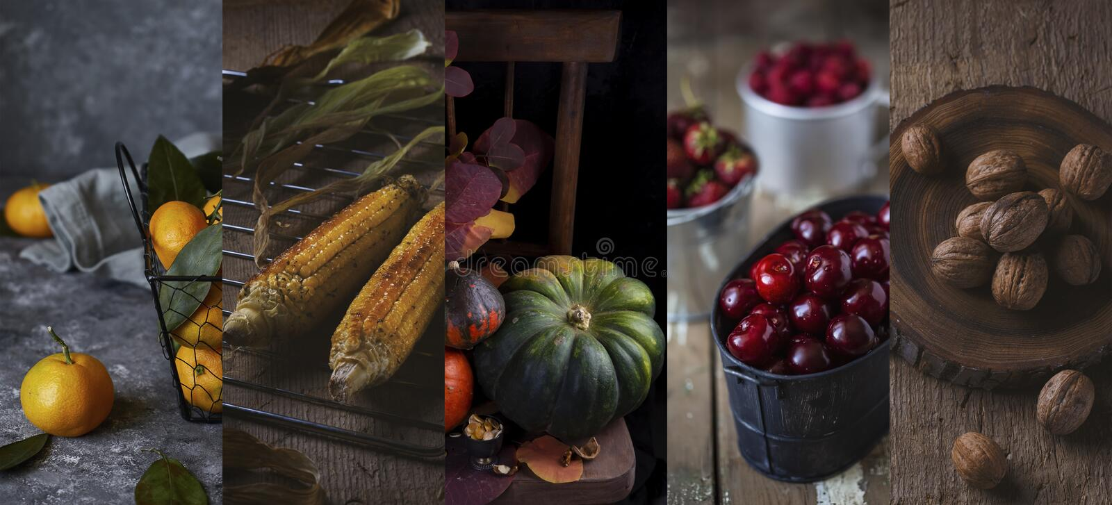 Collage of photos of autumn vegetables. Harvest of pumpkins, walnut, corn, berries, tangerines royalty free stock photo