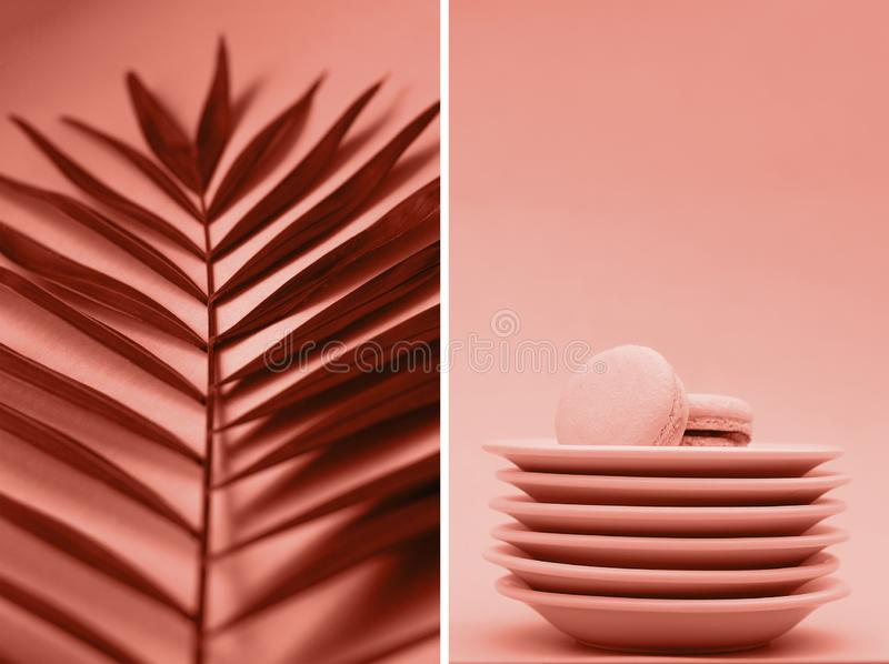 A collage of photos of coral color with palm branches and macaroons stock photography