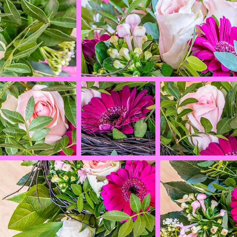 Collage Of Pink Beautiful Flowers royalty free stock images