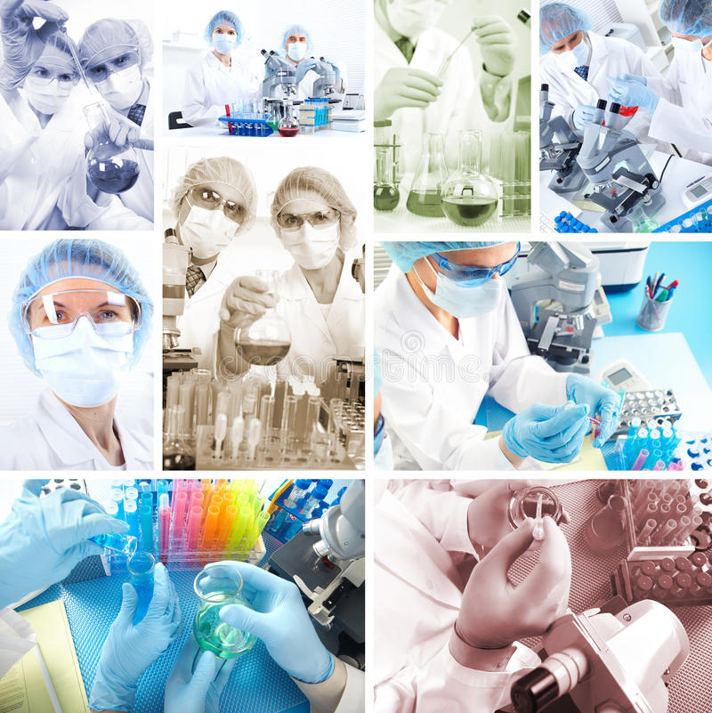 Free Collage. Science Team Royalty Free Stock Photo - 23191535