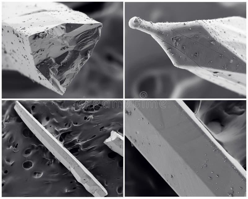 Collage scientifique Photo du microscope électronique image libre de droits