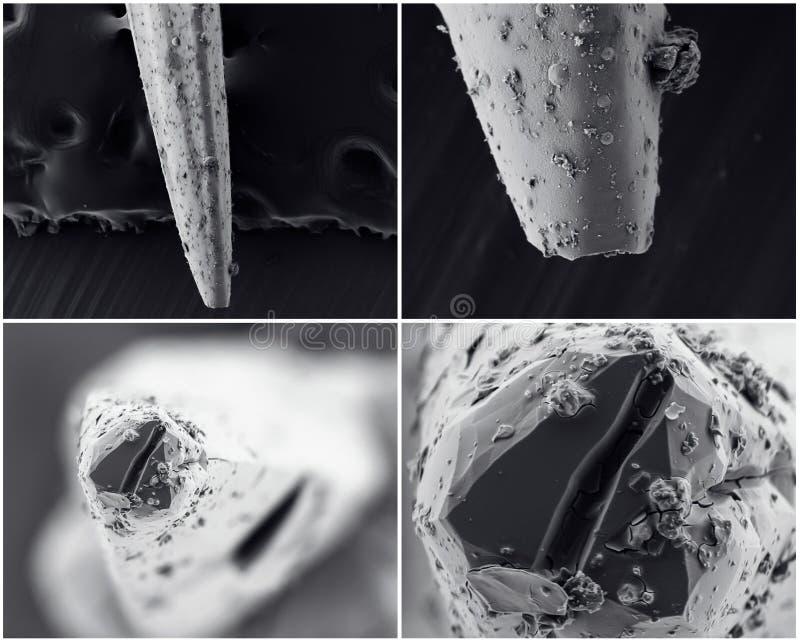 Collage scientifique Photo du microscope électronique photos stock