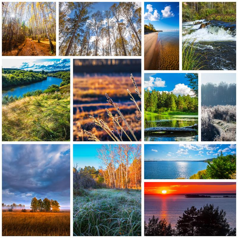 Collage of nature photos royalty free stock photography