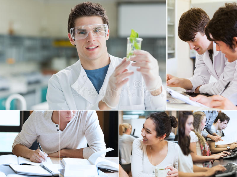 Collage of students doing chemistry royalty free stock image