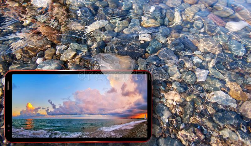 Collage of sunny jellyfish floating in water above Black sea stones and cell phone displaying summer nature of Sochi region royalty free stock image