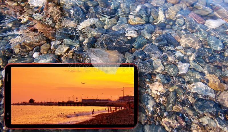 Jellyfish floating in water above Black sea stones and summer sunset displayed on cell phone screen stock photos