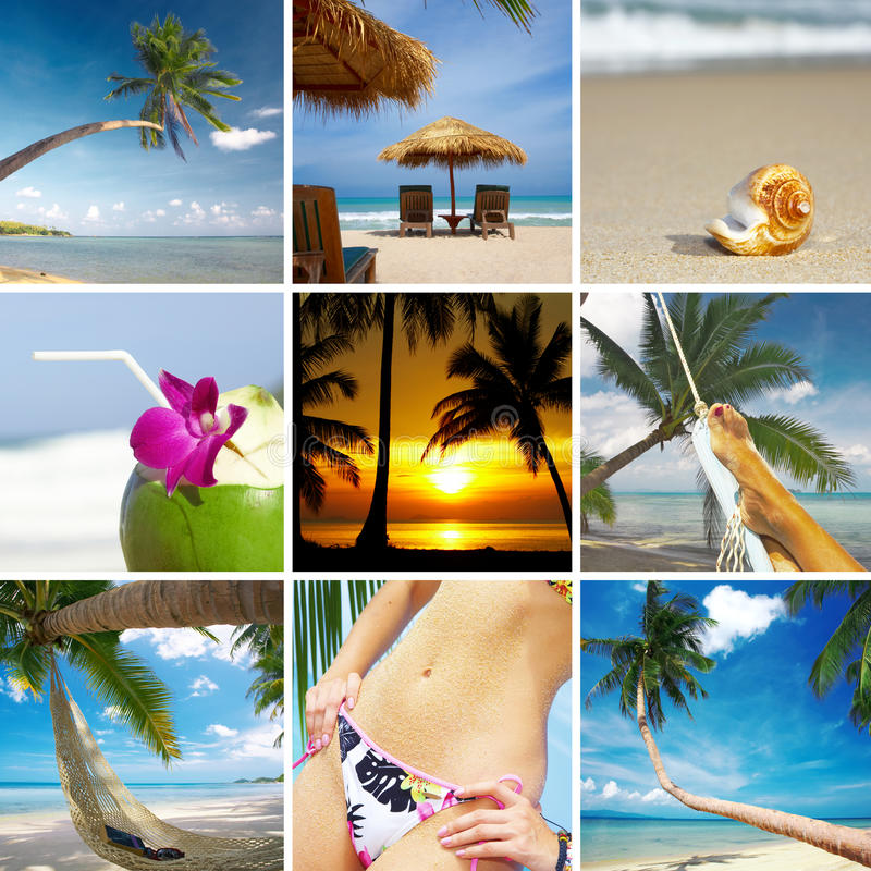 Collage tropical photographie stock