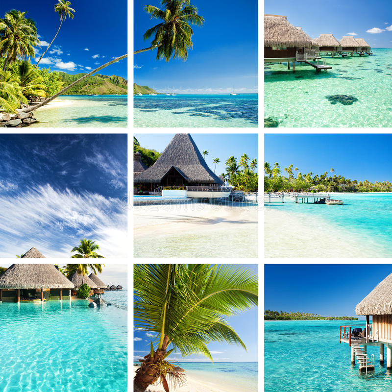 Collage of tropical images from moorea and tahiti. Islands stock images