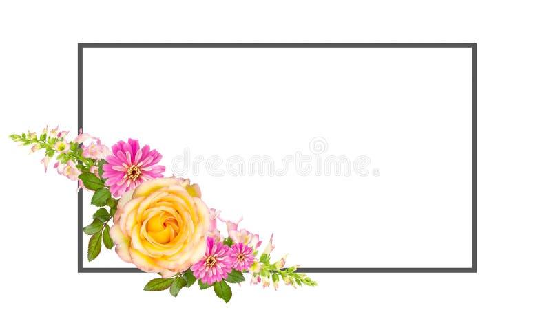 Collage van bloemen met exemplaarruimte stock illustratie