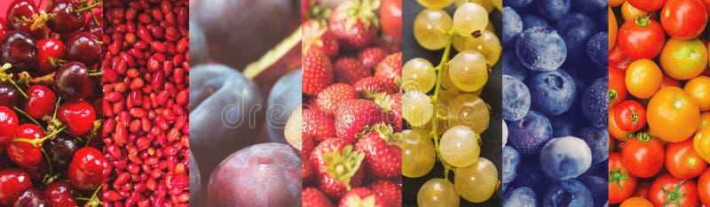 Collage van kleurrijke vruchten foto's royalty-vrije stock fotografie