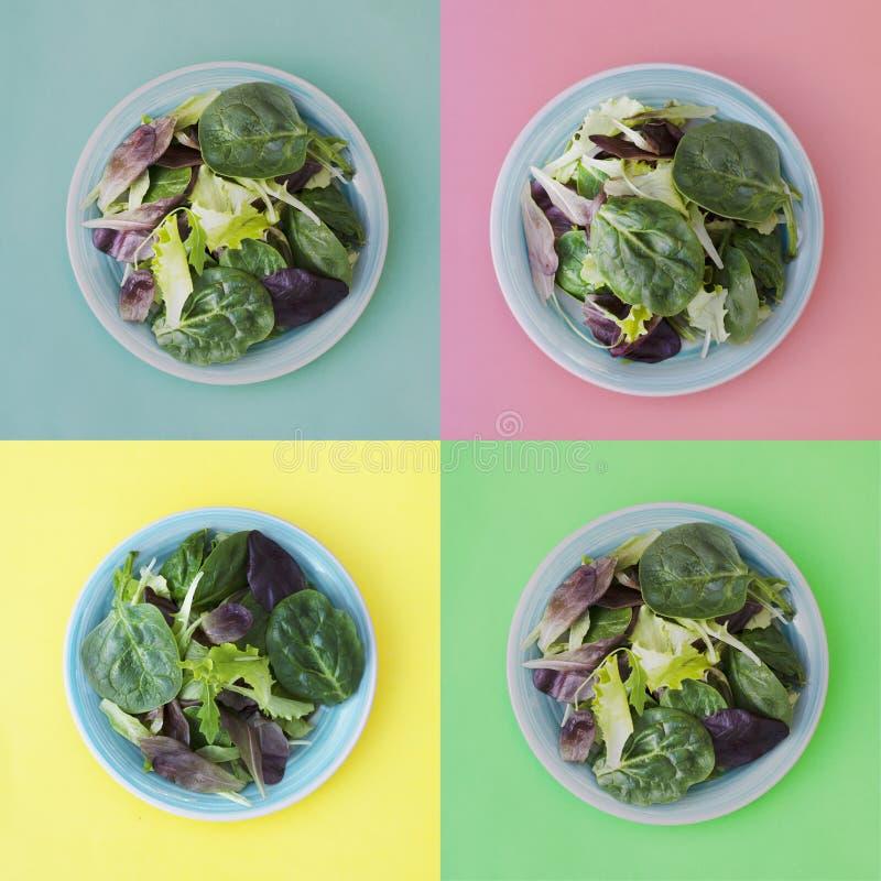 Collage van verse gemengde groene salade in ronde plaat, kleurrijke achtergrond Gezond voedsel, dieetconcept Hoogste mening, vier royalty-vrije stock foto