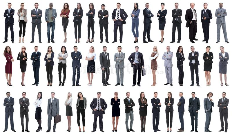 Collage of a variety of business people standing in a row. On white background royalty free stock photo