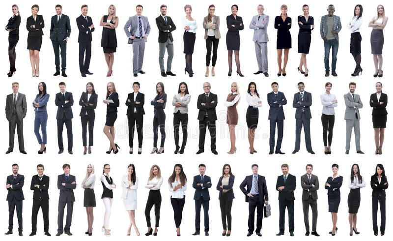 Collage of a variety of business people standing in a row. Isolated on white background stock images