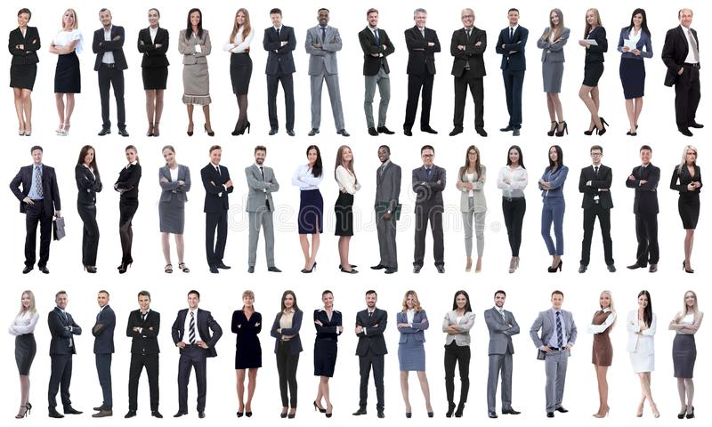 Collage of a variety of business people standing in a row. Isolated on white background royalty free stock photo