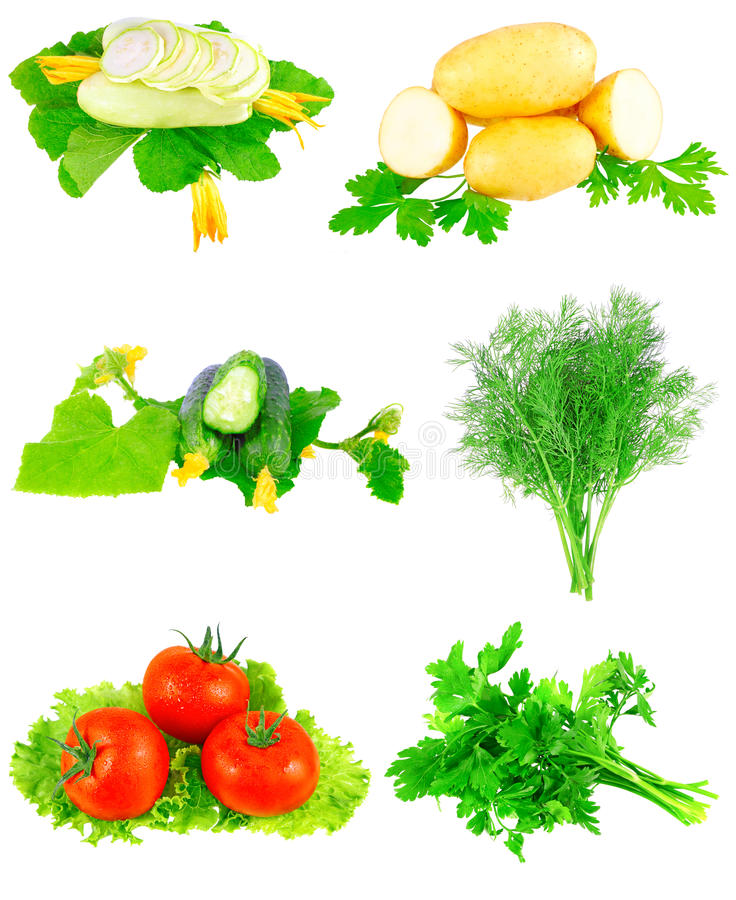 Download Collage Of Vegetables On White Background. Stock Photo - Image: 23104952
