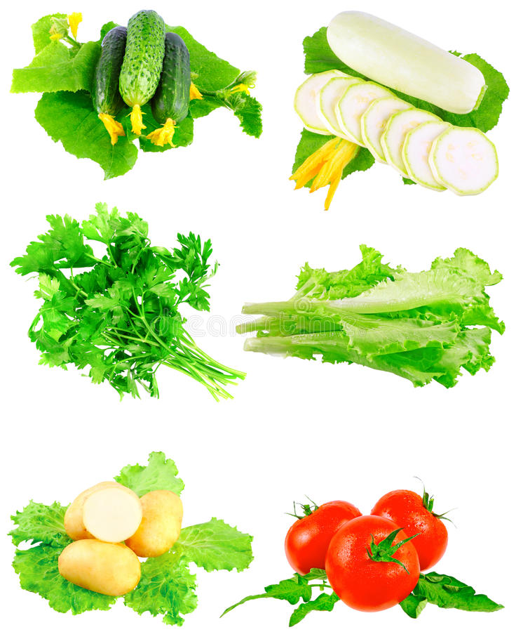 Collage of vegetables on white background. royalty free stock images
