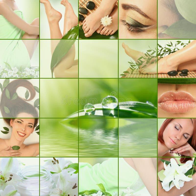 Collage vert image libre de droits