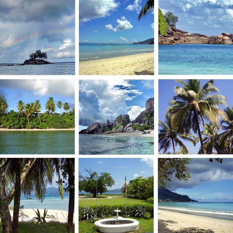Collage von Bildern lizenzfreies stockfoto