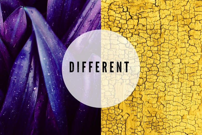 Collage von Blättern und von Holzoberfläche lizenzfreies stockfoto