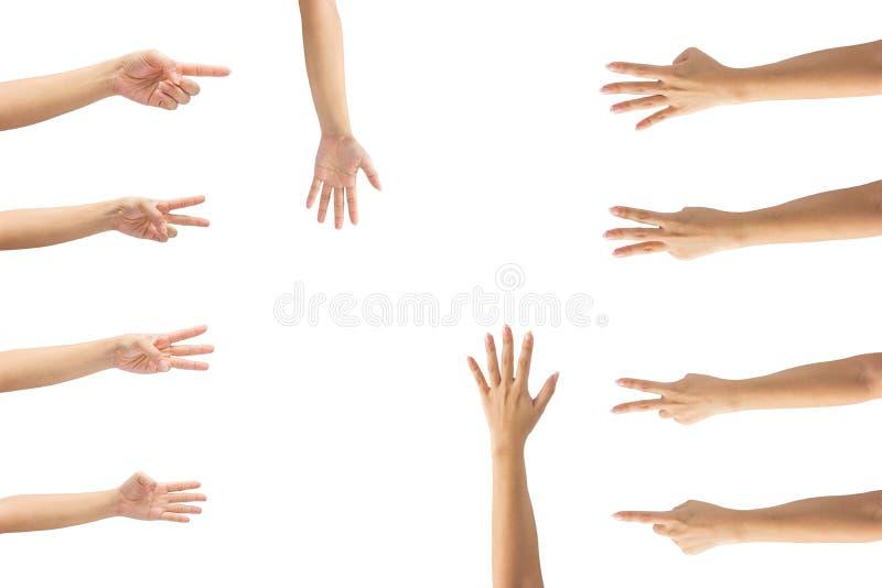 Collage von Frauenhänden auf weißen Hintergründen stockbild
