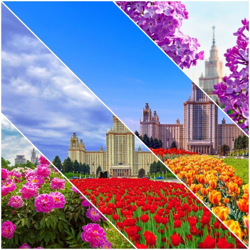 Collage von vibrierenden Ansichten der ber?hmten russischen Universit?t lizenzfreies stockfoto