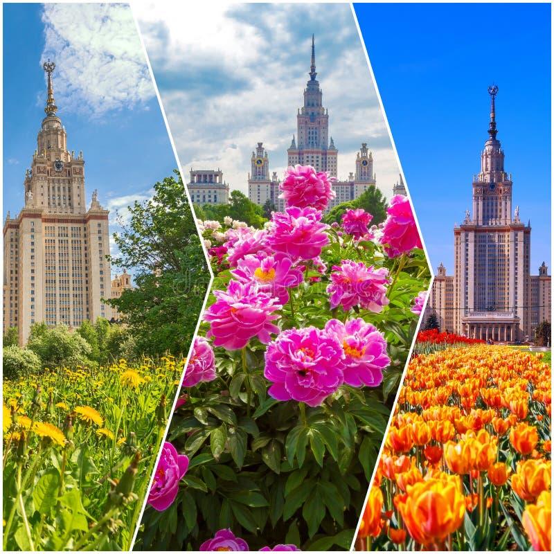 Collage von vibrierenden Ansichten der ber?hmten russischen Universit?t stockbilder